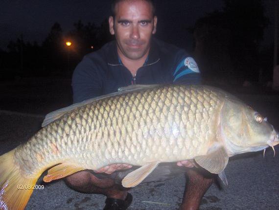 Carpa 7,1 kg Lagoa de Mira 2 Agosto 2009