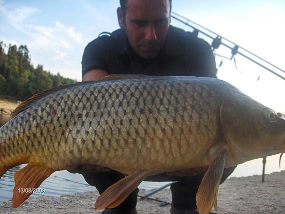 Carpa 9 kg Aguieira 13 de Agosto 2009