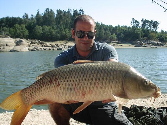 22 Agosto 2009 Aguieira - Carpa 7,4 kg