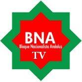 BNA Televisión