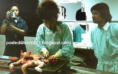 makan organ bayi