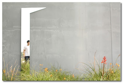 glimpse mirror by sarah dayo