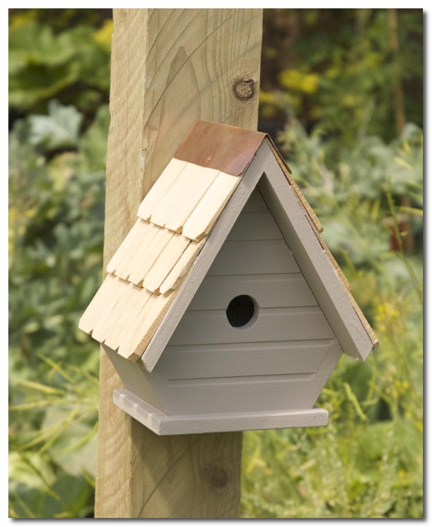 the langham bird house