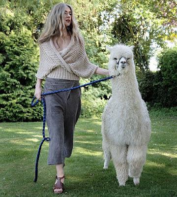 purl alpaca designs