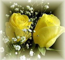 Rosas para mi blog!