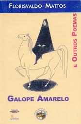 Galope amarelo - Florisvaldo Mattos