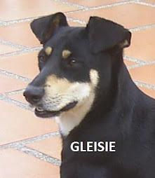 GLEISIE
