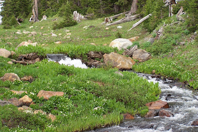 Telephone Creek, Snowy Range Mountains, Medicine Bow National Forest, WYOMING