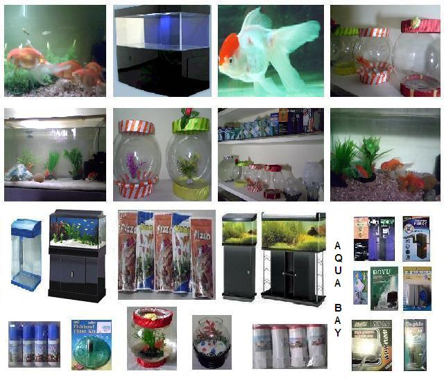 aquariums accessories - group picture, image by tag - keywordpictures ...