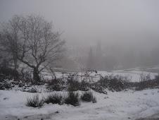 Cai neve,cai neve,cai neve em Braga...