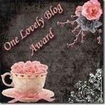 2.Ocenění blogu