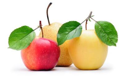 Znalezione obrazy dla zapytania owoce i warzywa clipart