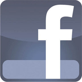 Facebook - Link will open in a new window