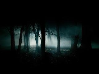 Cool Desktop Sfondo Desktop Foresta Oscura