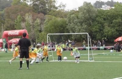 Taça Academia Sporting VII
