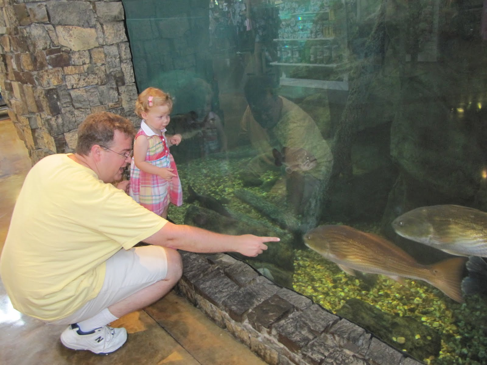 Family summer camp at bass pro shops for Bass fish tank