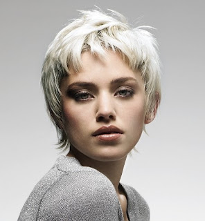 Short Hairstyle 2010