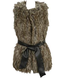 http://4.bp.blogspot.com/_lirt8srIYAI/ST2rowkZ3sI/AAAAAAAAB00/lvlxVXd5Dss/s320/faux+fur+vest.jpg