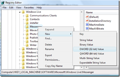 How to Run Multiple Instances of Windows Live Messenger With a Registry Edit