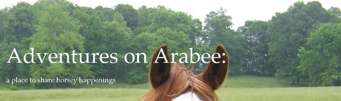 Adventures on Arabee