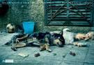 Cazando perros en España Abandonado