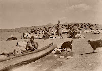 Old picture of iran
