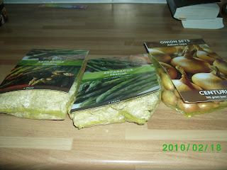 asparagus and onion sets