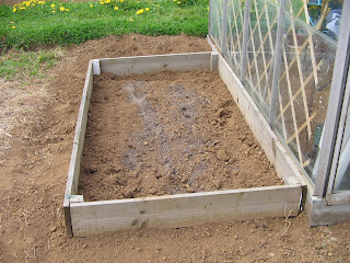 raised asparagus bed