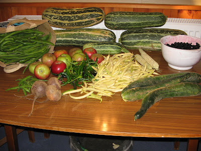 runner-beans, marrows, blackberries, cooking apples, chillies, yellow beans, baby-corn, cucumbers, green beans and beetroot.