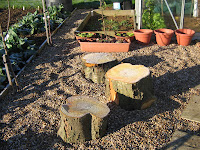 cherry tree stump stools