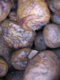putrid potatoes