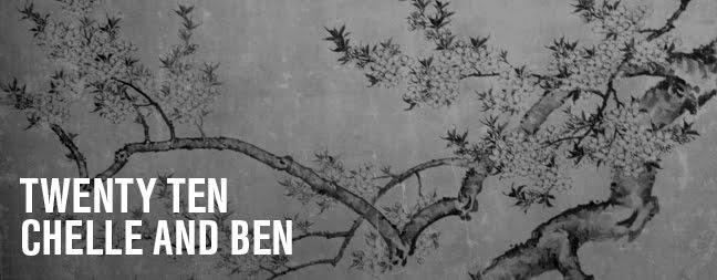 twenty ten chelle & ben