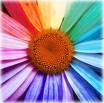 Somos mais coloridos