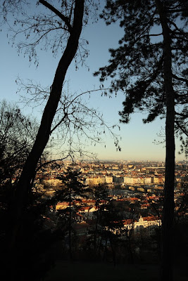 Prague in the sunset through the trees