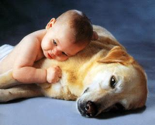 Amazing & Cute Unusual Loving Images