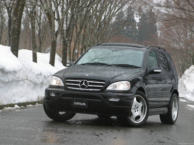 2003 Wald Mercedes-Benz M-Class PICTURES