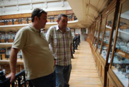 Museo de Geología Madrid