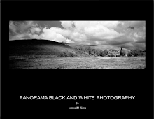 Panorama Black and White