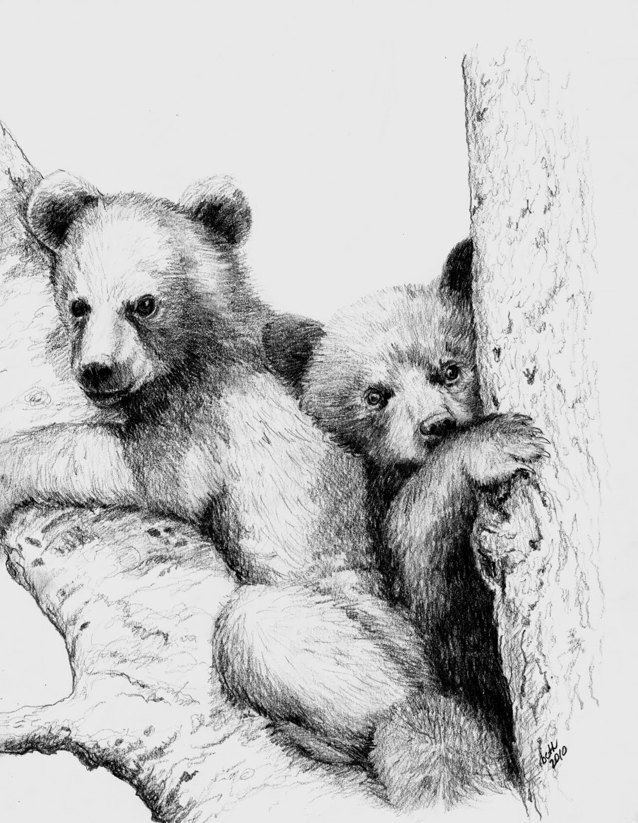 Here is a pencil sketch of a couple of bear cubs that i completed last night i have already made them into notecards hopefully they will sell well at the