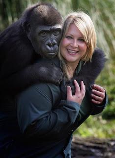Nuestra tierra, sus seres y paisajes ... ;) - Página 9 Bristol+Zoo+Welcomes+Orphaned+Gorilla+MGvOwRlOc5jl