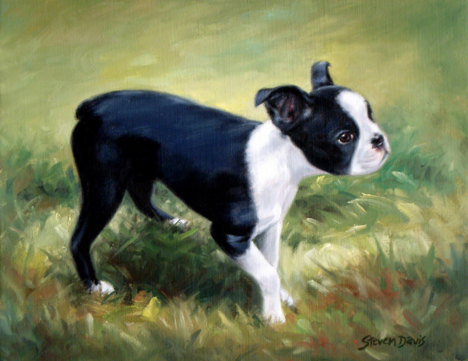 PZ C: terrier