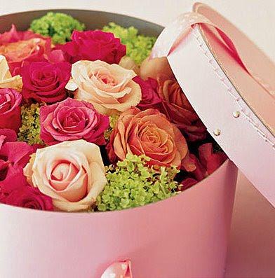 caixas com flores