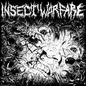 yleinen hevi-/metallitopik - Sivu 5 Insect+Warfare-Carcass+Grinder+%5BSplit%5D