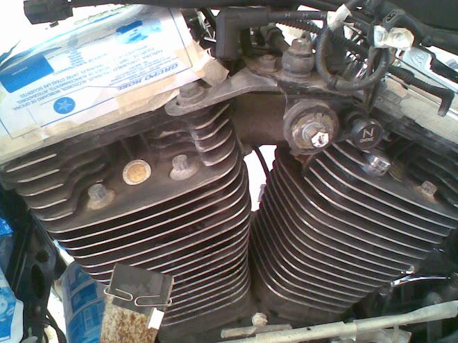 La pintura del motor estaba deteriorada, opaca y lucia vieja y arrumbada