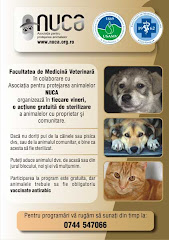 Asociatia pentru protejarea animalelor