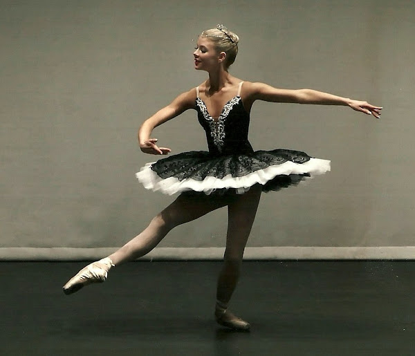 Classical ballet tutu (stretch) PS 2010
