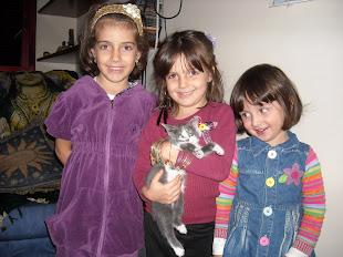 As Crianças e os Animais