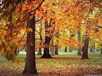Приметы погоды октября