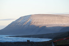 Iversenfjellet i vinterslør