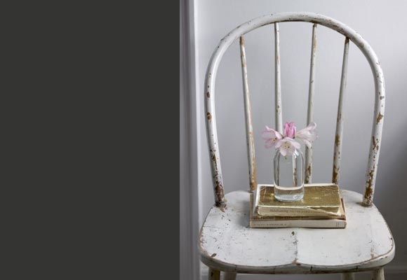 [Pink+Flower+on+a+Chaire+pul+Massey.jpg]